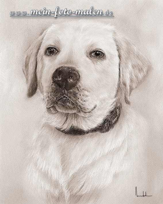 zeichnen leicht hund